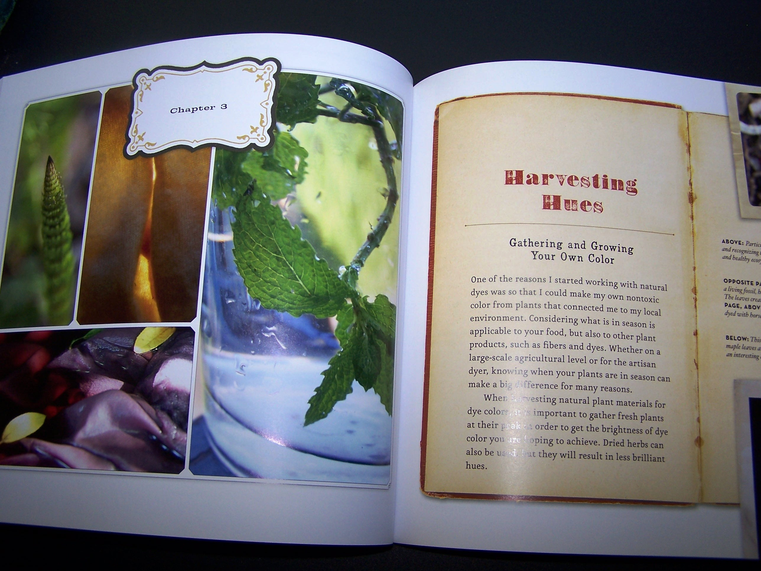 book review the handbook of natural plant dyes gardening jones