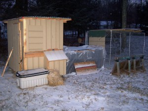 snow on the coop