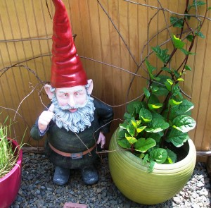 One of these is not a gnome.