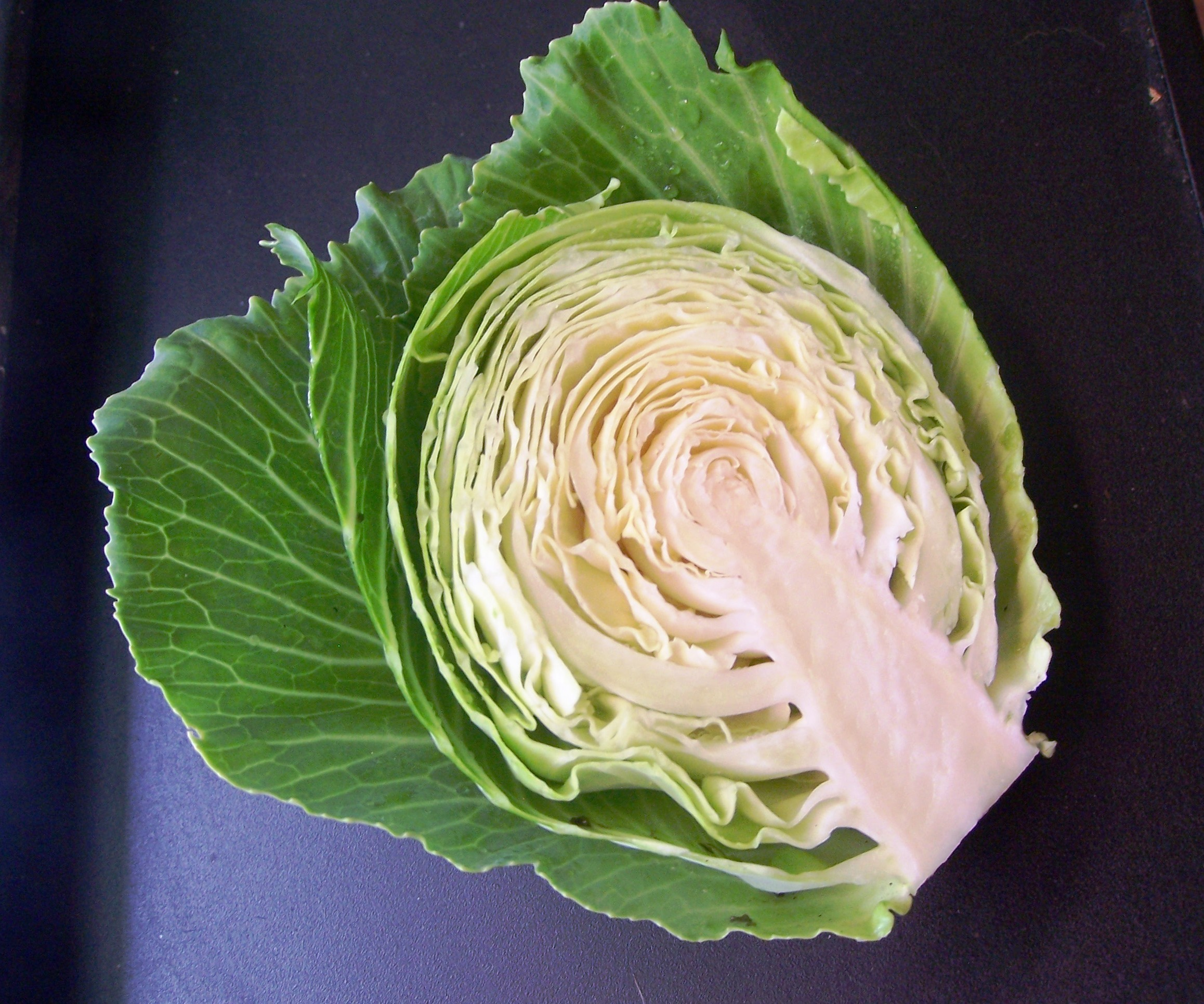 9 Ways To Deal With Cabbage Worms And Loopers Gardening Jones
