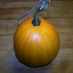 Now it is a winter squash.